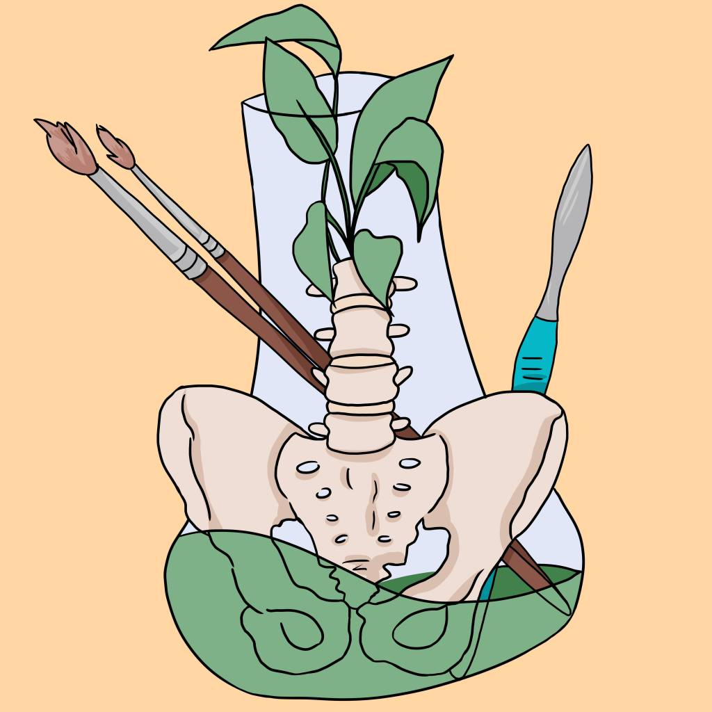 A drawing of a mix of artist and scientific tools including paint brushes, a scalpel, and bones all held in a test tube